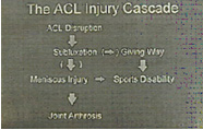 acl injury cascade,acl injury,acl reconstruction india,acl reconstruction best india,acl reconstructionbest doctors in india,acl reconstruction best surgeon in india,acl reconstructionbest surgery in india,acl reconstruction best treatment in  india,acl reconstruction in south  india,acl reconstruction north  india,acl reconstruction  east india,acl reconstruction west india,acl reconstruction best in  india,acl reconstruction best surgery in india,acl reconstruction cost-effective in  india,acl reconstruction best doctors in india,acl reconstruction india,acl reconstruction india,acl reconstruction india,acl reconstruction now in india,acl reconstruction india,acl reconstruction by dr.bajaj,acl reconstruction by p.s.bajaj